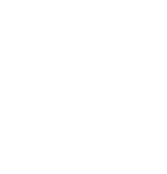 Boc Logo Icon White Turned